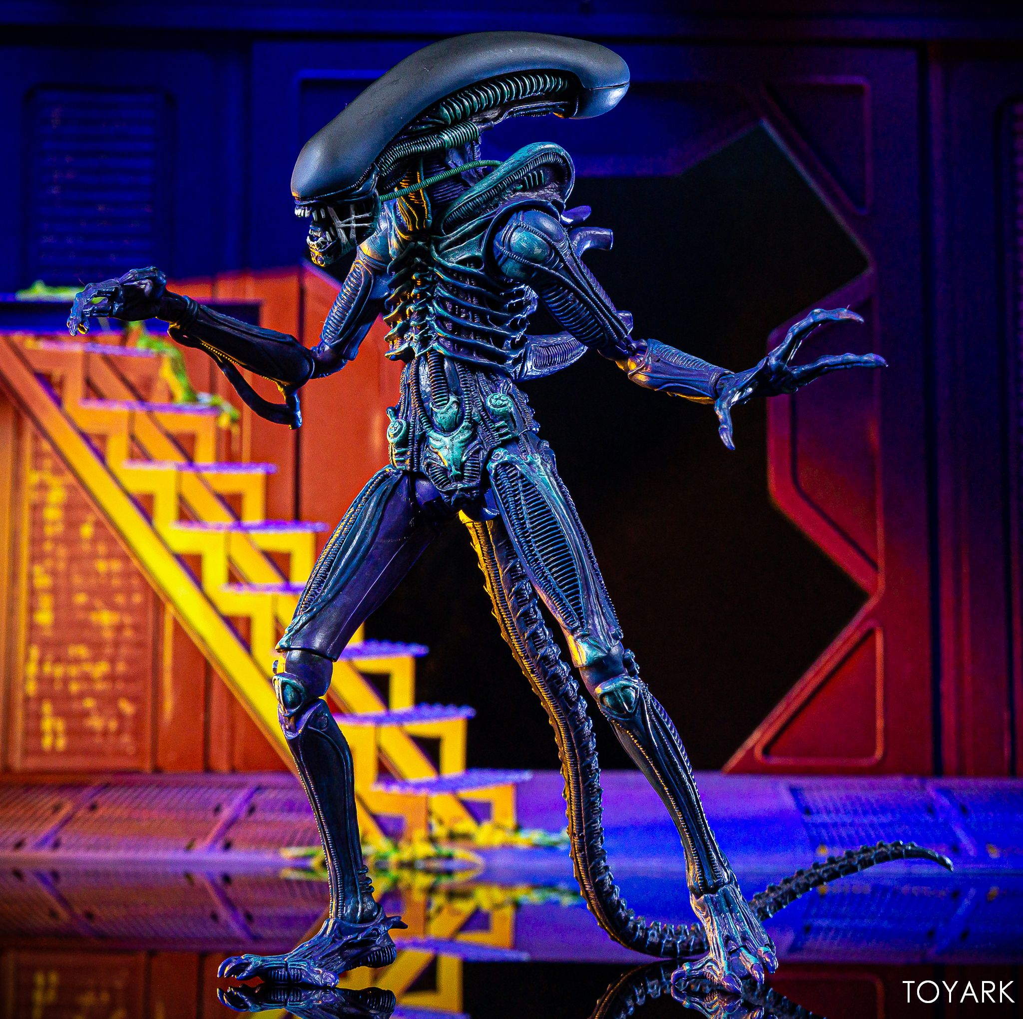 Neca Aliens Warrior 2019 Club Exclusive Xenomorph Action Figure Kenner Model Toy