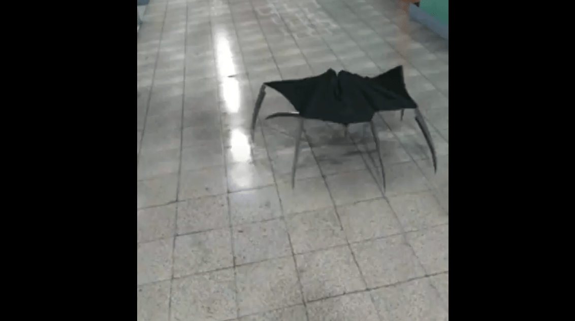 An Umbrella Turns into a Deadly Monster in This Really Cool and Very Short Viral Video - Bloody Disgusting