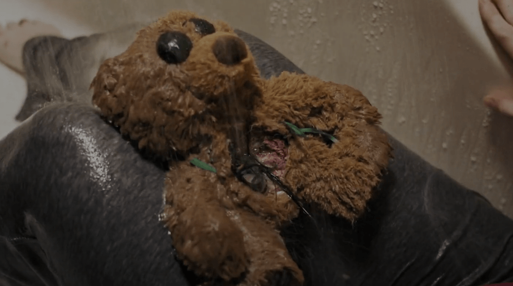 A Teddy Bear from a Yard Sale Has a Creature Living Inside of It in Upcoming 'The Nest'! [Trailer]