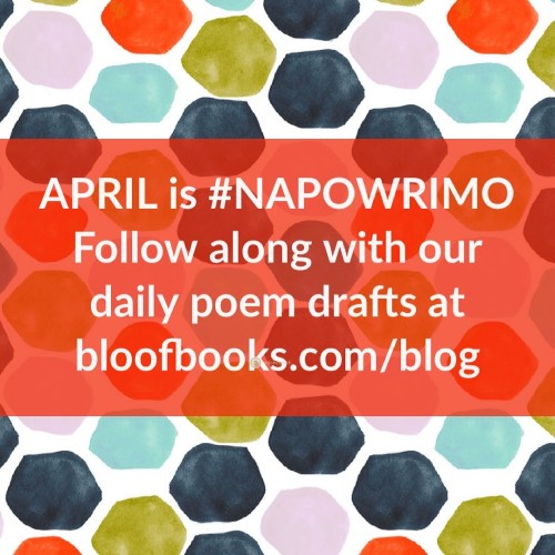 A multicolored pattern of hexagons in orange, pink, dark and light blue sits behind an orange box with white text that says April is #NAPOWRIMO. Follow along with our daily poem drafts at bloofbooks.com/blog.