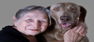 Help dog assists cancer patients