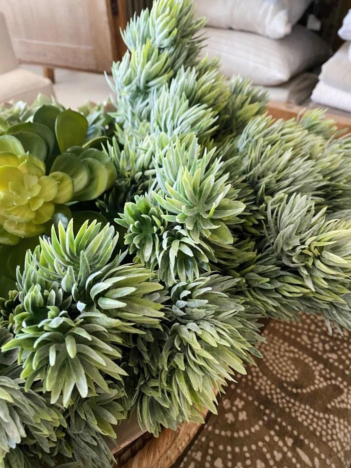 Mini Succulent Bush