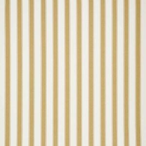 Rafe Stripe Chartreuse