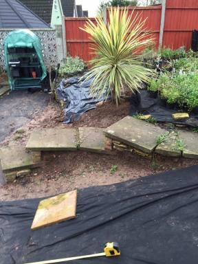 garden 1812154