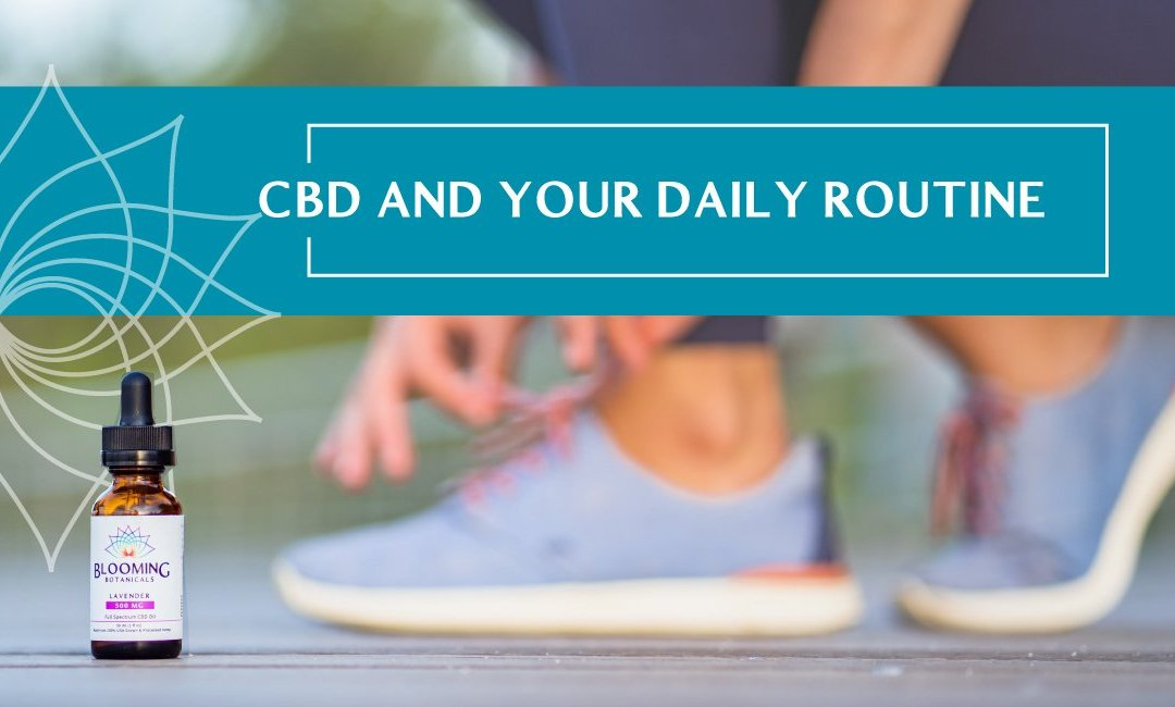 CBD and Your Daily Routine