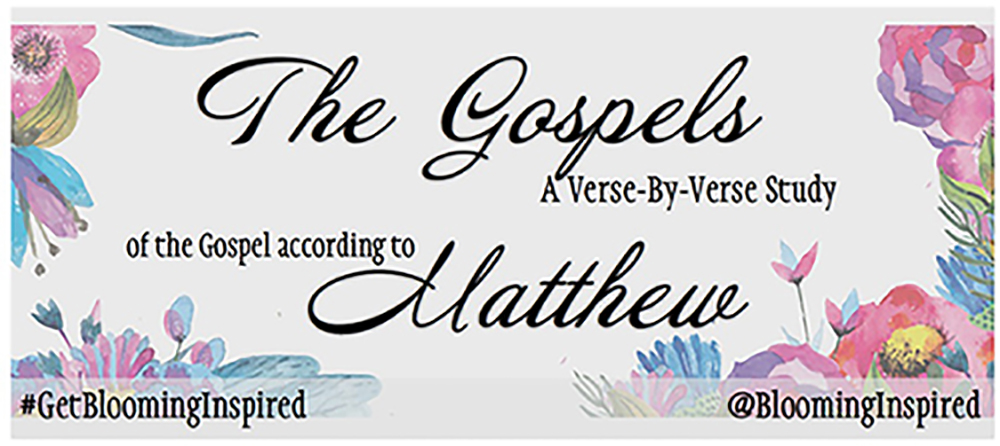 The Gospels: Verse-By-Verse |  Chapter Three – The Forerunner