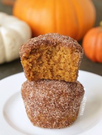 http://www.texanerin.com/vegan-pumpkin-donut-holes/#_a5y_p=2581718