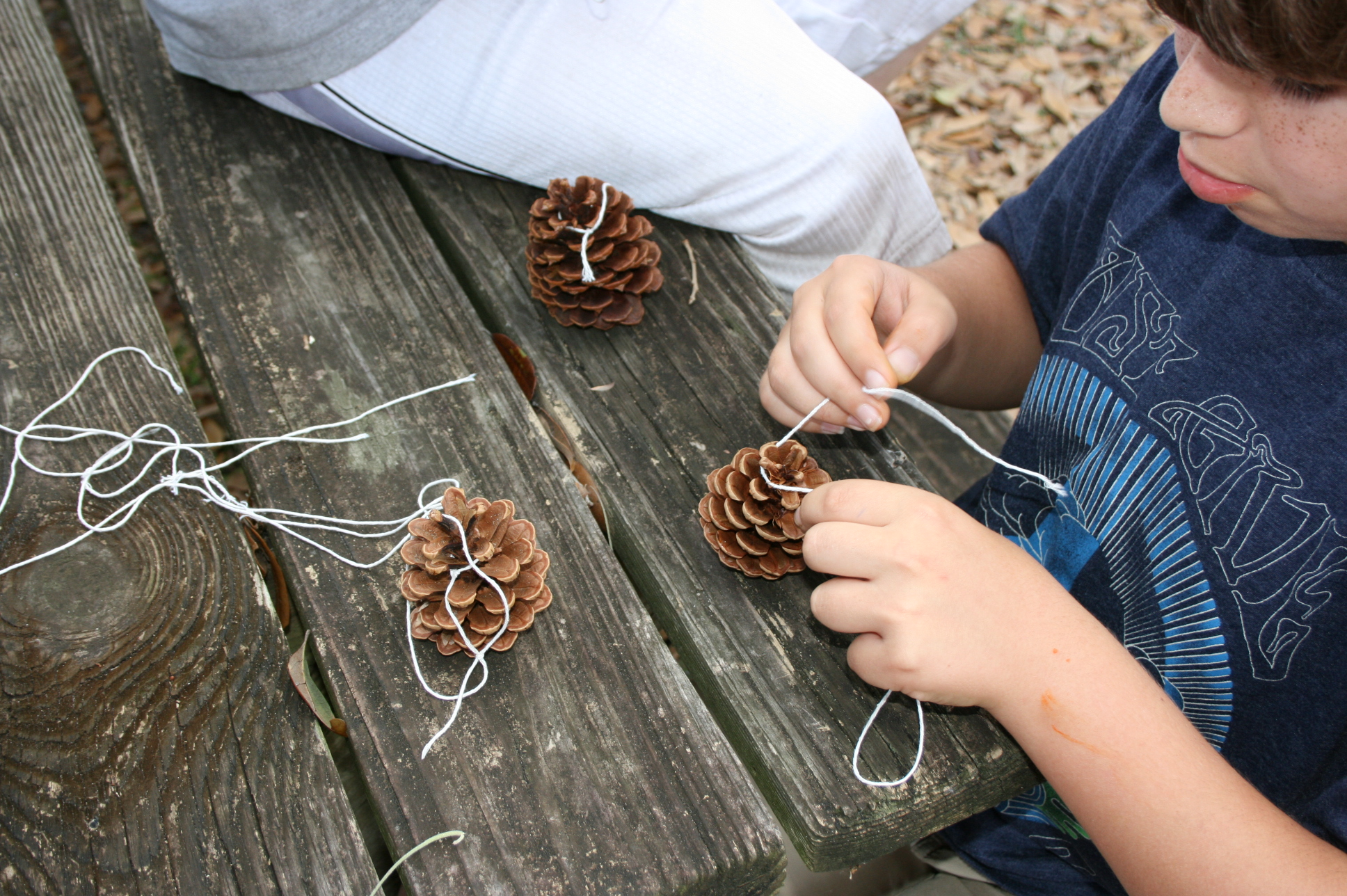 Cómo hacer Halloween Birdseed Ornaments || Padres parientes