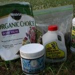 what is organic plant food