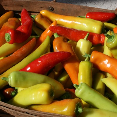 Let's Can Peppers!