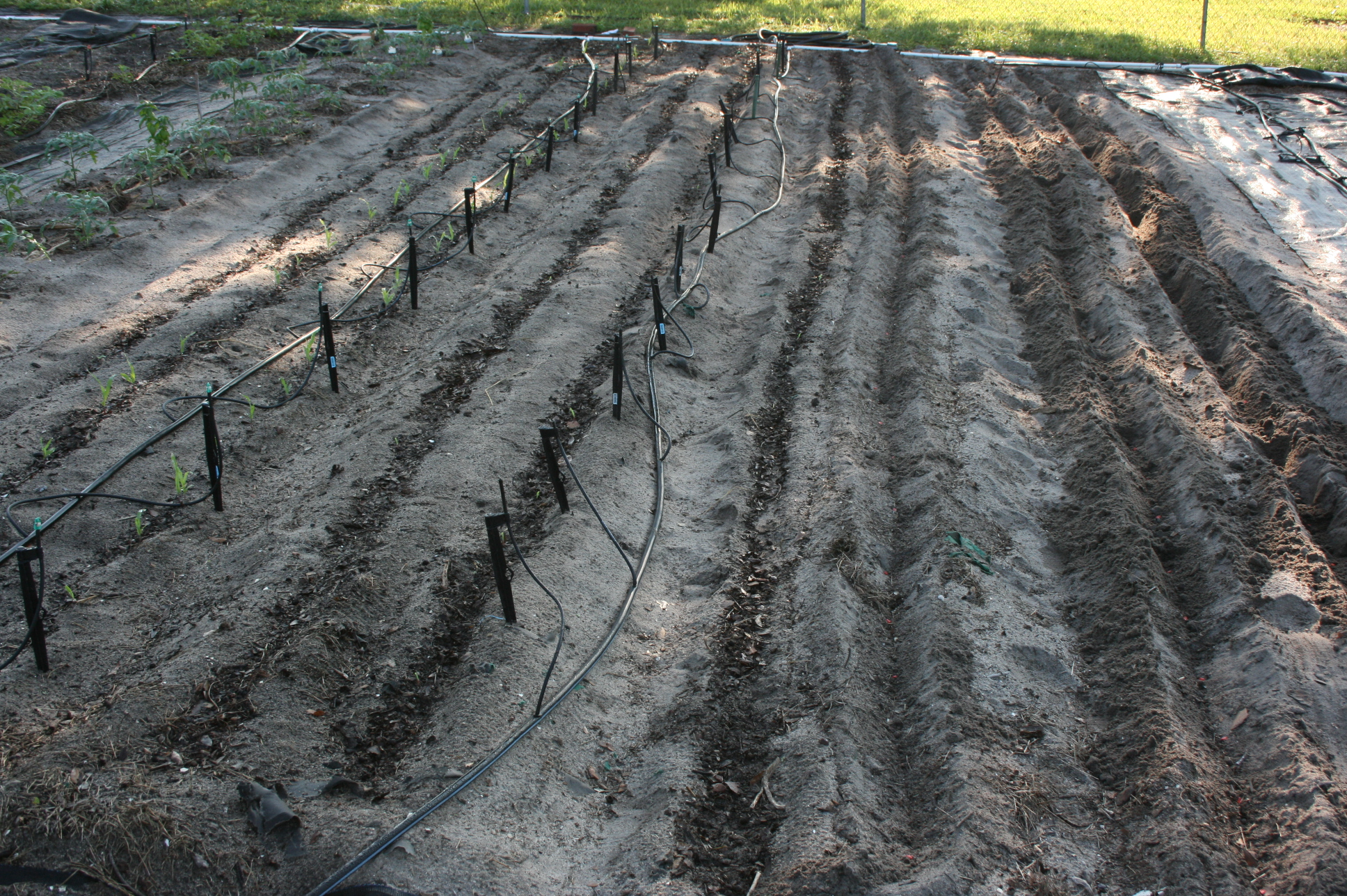 deep-channels-for-corn-planting