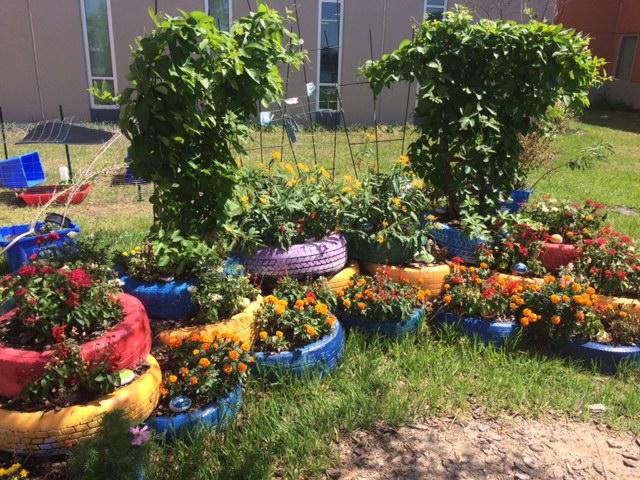 A Model For School Gardens Millennia Gardens Elementary