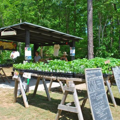 Agrihoods Replace Golf Course Communities