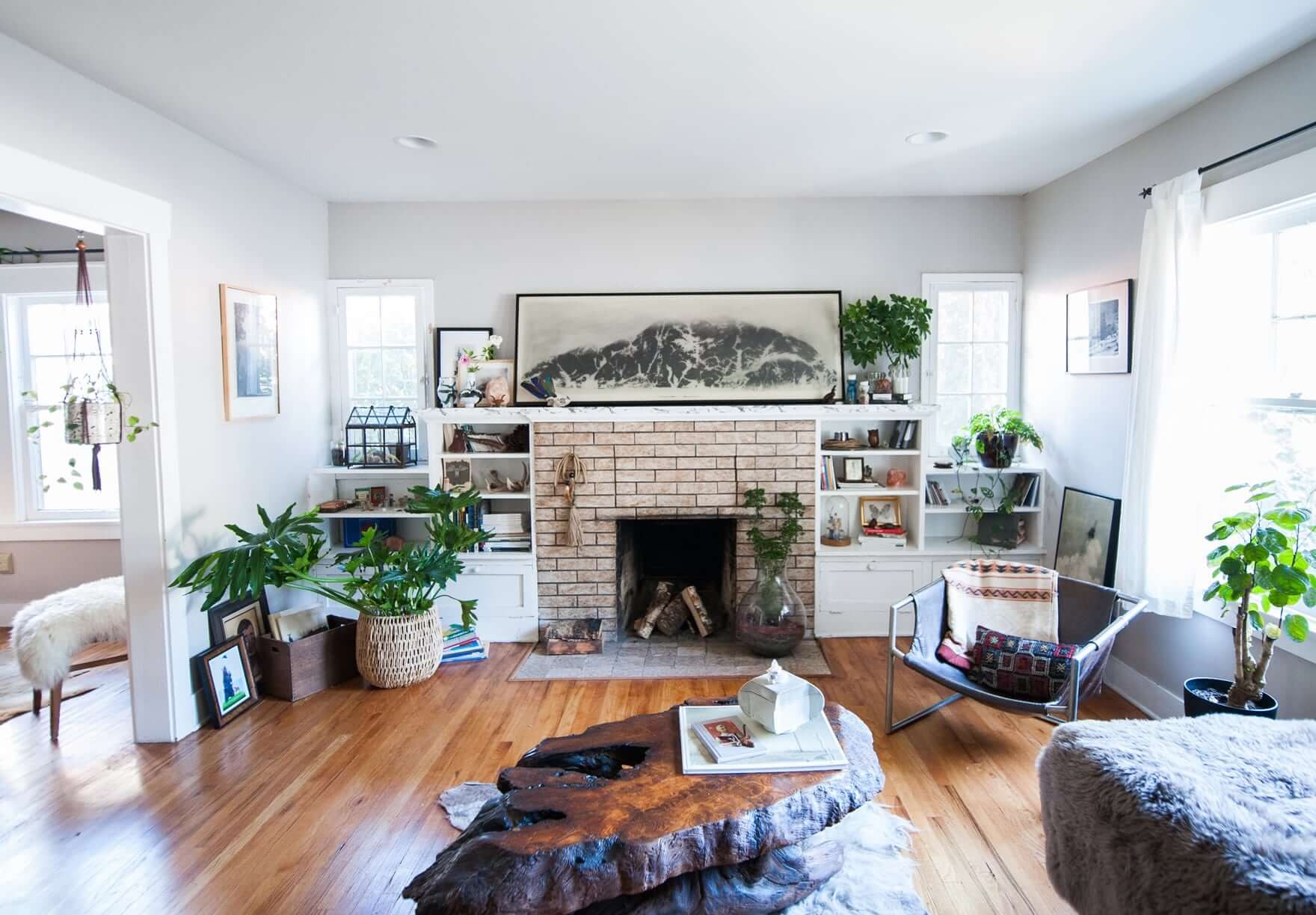 """Plant Life Series: An Eclectic, Cozy Rental in Los Angeles on """"Room Decor""""  id=74194"""