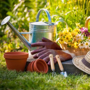 Garden Supplies Link