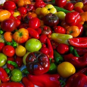 Vegetable-Herb Link
