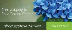 Shop Monrovia Blooms Garden Center