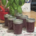 Prickly Pear Jelly: Garden to table Recipe