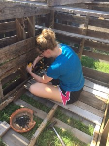 The building of the temporary coop. All hands on deck. Love these kids! Let me just say it is a farm/city chick that can pull off glamorous while building a coop.
