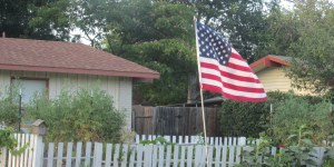 Happy Independence Day! Let this be the year you cut your dependence on city water with a rain barrel.