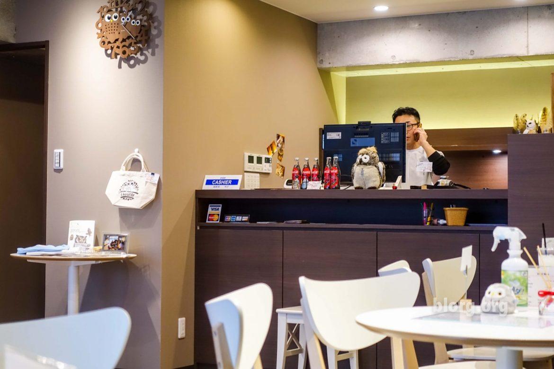 Owl cafe Japan
