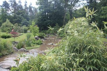 Bach der Holzmühle