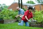 The Complete Guide to Creating an Edible Garden