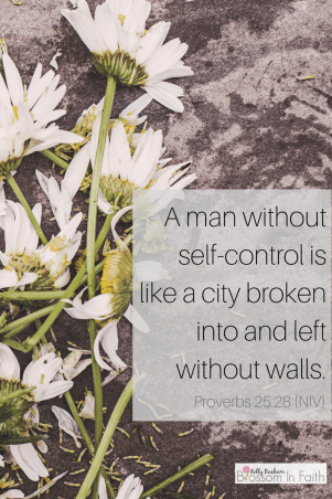 Self Control- Proverbs 25:28
