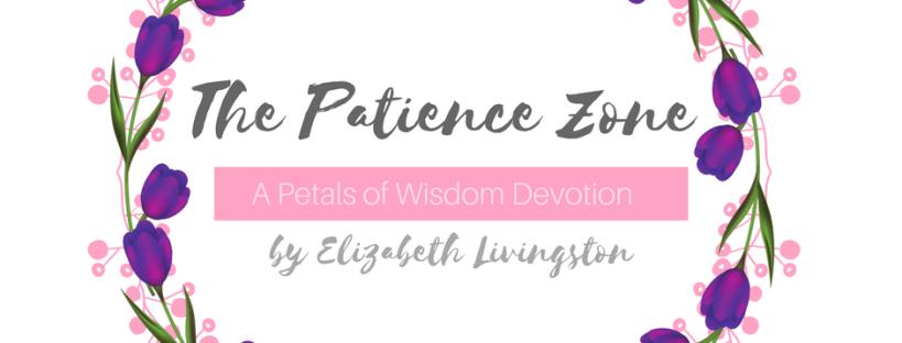 The Patience Zone By Elizabeth Livingston