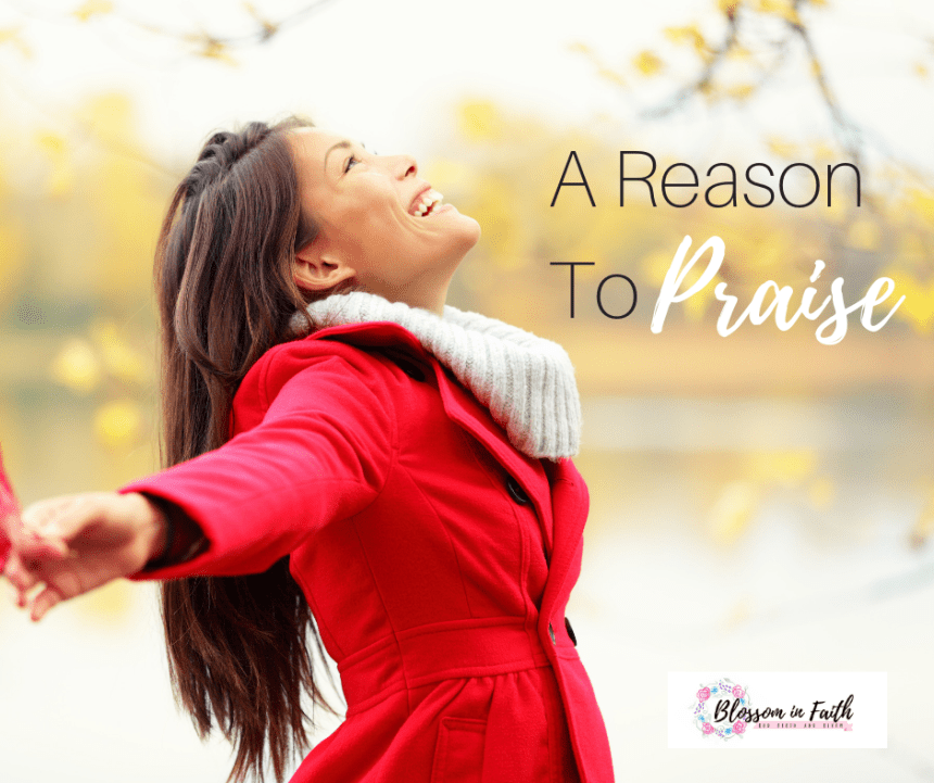 A Reason To Praise--a devotion about finding joy from the true source of joy.