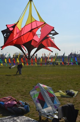 A kite hangs near the club display area.