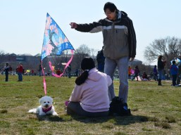 A family rests in between flying a kite.