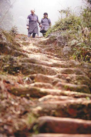 愛的天梯 The Ladder of Love [愛情哲學#01]   BLOSSOMS EVERYWHERE 游城客書