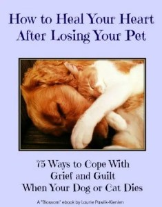 prayers for loss of a pet