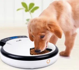 Automatic Pet Feeder for Dogs