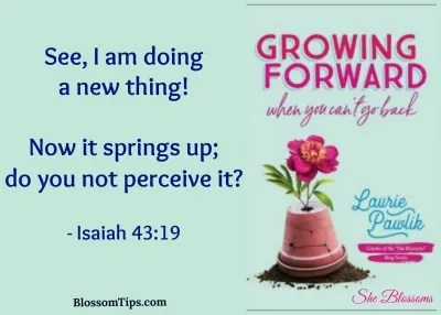 She Blossoms What You Were Created to Do – Step 2