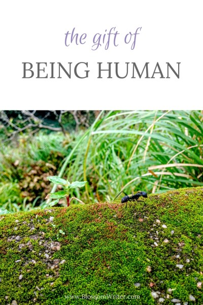 Pinterest The Gift of Being Human