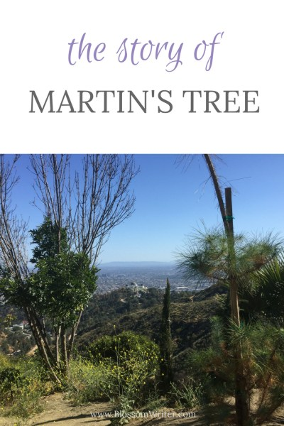 Pinterest The Story of Martin's Tree