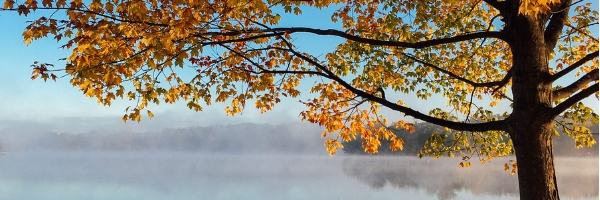 Fall Into Forgiveness Part 2: Forgiveness vs Revenge