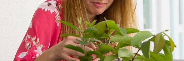 An image of Melissa touching some green leaves.