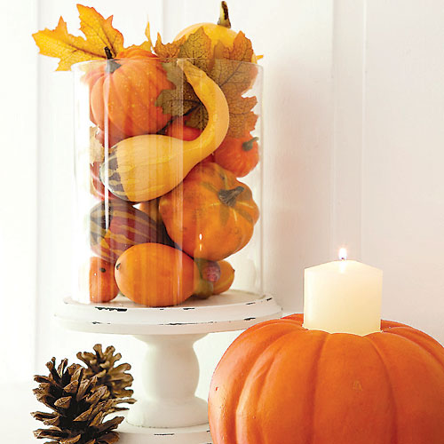 Cute pumpkin and squash centerpiece