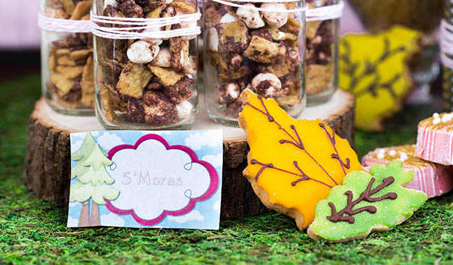 Trail Mix Treats At Camping Party