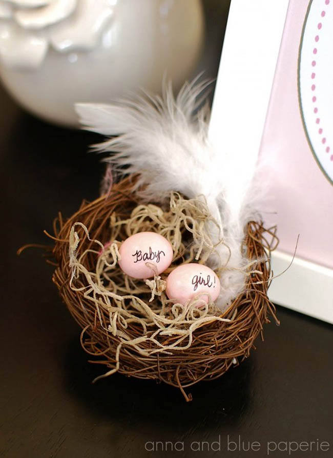 Nest Baby girl baby shower decorations