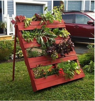 Wood crates as plant holders- great for backyards!
