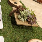 DIY Succulent Centerpiece- Love This! (7) -Learn How To Make Them On B. Lovely Events
