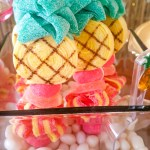 love-these-pineapple-candy-kabobs