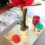 poinsettias are really the best for Christmas Flowers- See more holiday home tour on B. Lovely Events