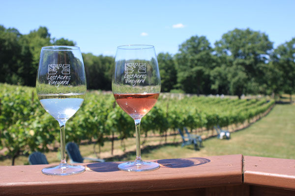 Image result for wineries CT free image