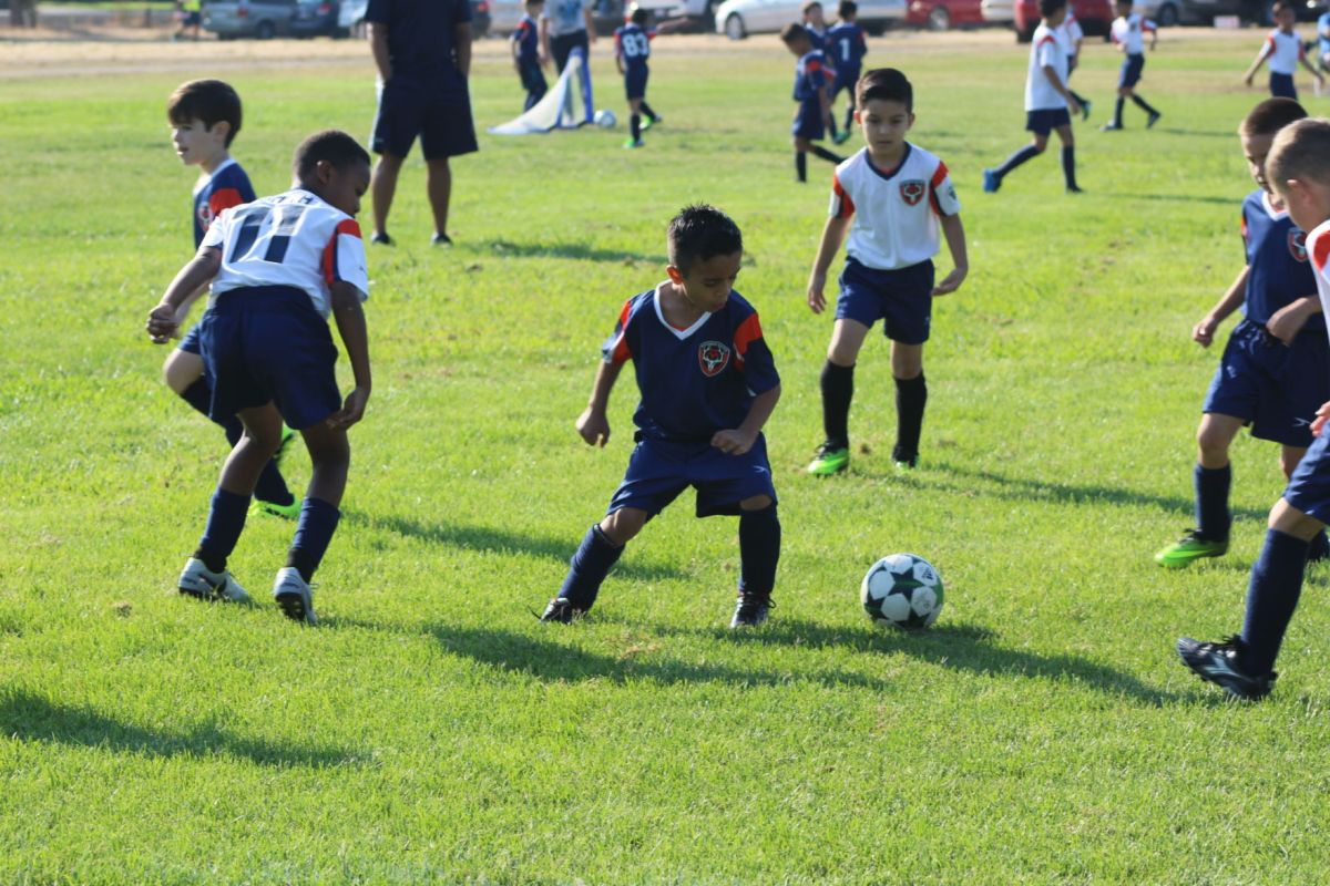 Carlton has led EG Soccer to area's largest youth sports ...