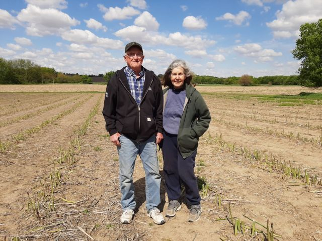 Gordon and Susan Miller in the center of the asparagus field